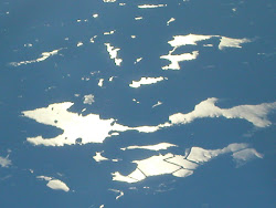 Dunlop Lake from the air
