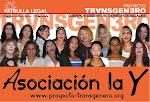Asociación TSTC La Y
