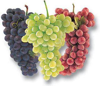 """Оригинал - Схема вышивки  """"Виноградные гроздья """" - Схемы автора  """"abdrashevasweta """" - Вышивка крестом."""