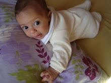 Tartaruguinha (03 meses)