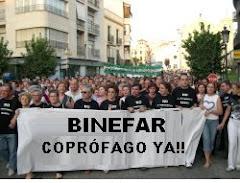 DELIRIO EN BINEFAR