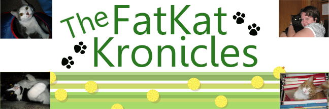 The FatKat Kronicles
