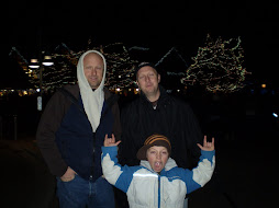 tyler, john and jackson at zoo lights