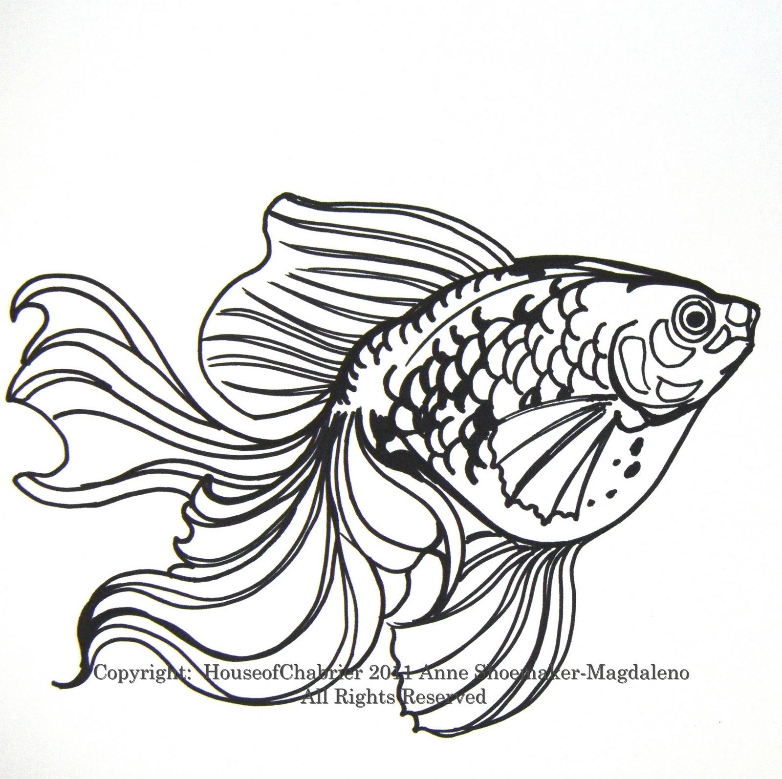 Goldfish line drawing - photo#7