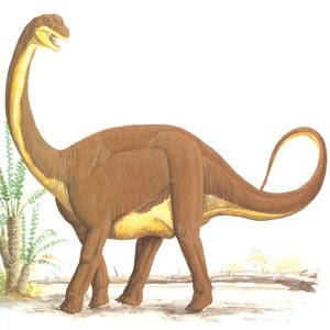 dinosaur-images-062-resize.jpg