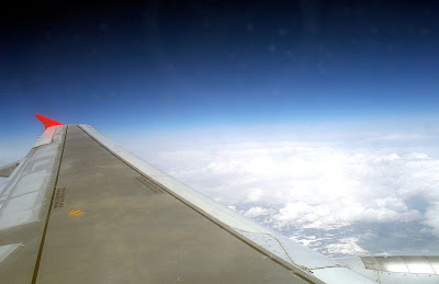 Northwest Wing in Flight