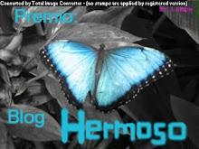 Premio: Blog Hermoso