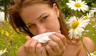 reduce hay-fever symptoms with accupuncture