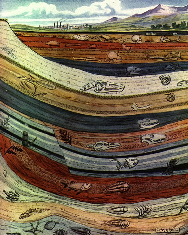 Geologic Cross Sections Athro Limited Earth Science