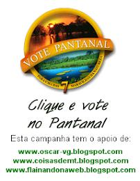 Vote no Pantanal!