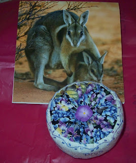 2009 calendar with mother kangaroo and baby next to the pincushion