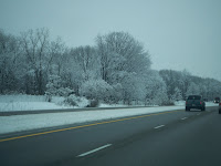 snow along the sides of the expressway and trees on our drive home
