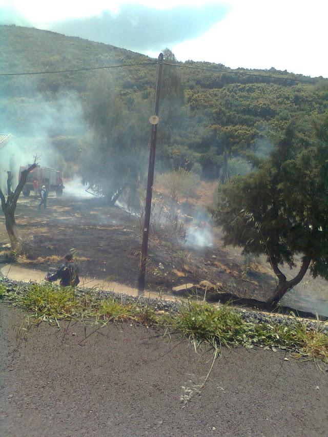 Εγκαιρη κατάσβεση πυρκαγιάς στην Γελουδιώτισσα