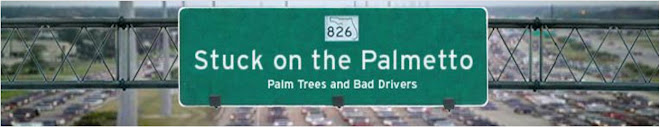 Stuck on the Palmetto