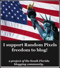 I Support Random Pixels!