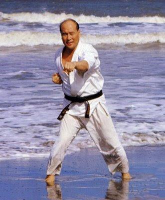 Masutatsu Oyama Training In Water