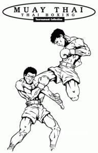 Muay Thai Boxing 3