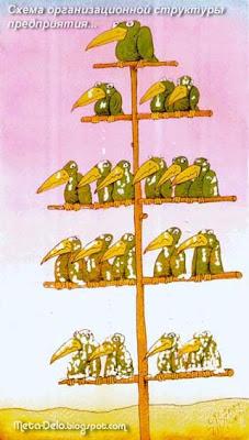 организационная структура управления предприятия
