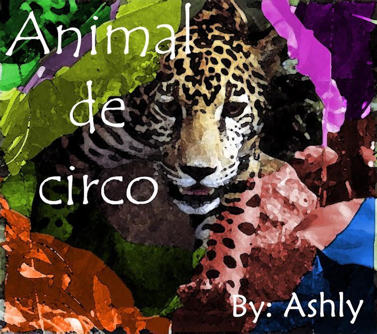 animal de circo