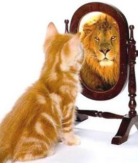 http://4.bp.blogspot.com/_B0OIClu7uQ4/SgkP3XfDjmI/AAAAAAAAA3k/aQ4SaNraZj0/s400/Cat+Lion+Mirror.jpg