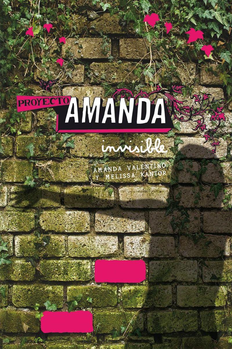 external image Proyecto+Amanda+1+Invisible.jpg