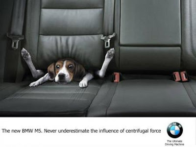 funny ad. Funny Ad Pictures
