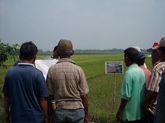 SL-PTT PADI & KEDELAI MK I 2010