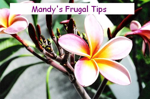 Mandy's Frugal Tips