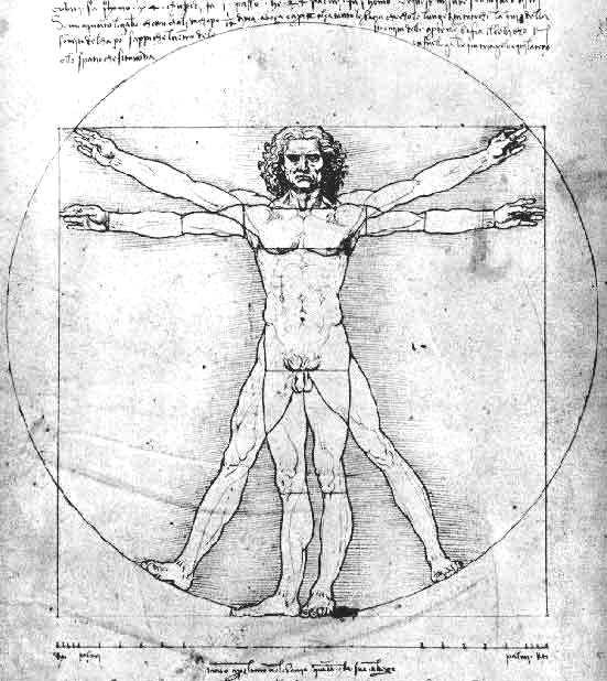 ARTE-UNICO: HOMBRE VITRUBIO de Leonardo de Vinci
