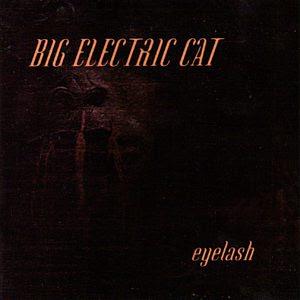 Big Electric Cat - Eyelash