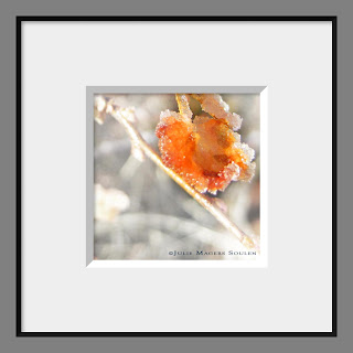 An orange autumn leaf is covered in frost giving it a sugary texture.