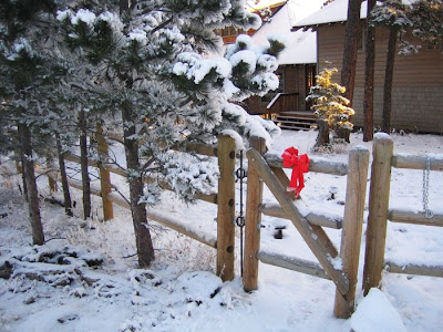 Red ribbon on a rustic gate with a path leading to a mountain home.