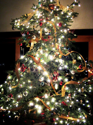 A Christmas tree decorated with lights.