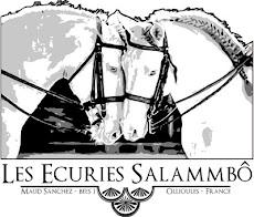 Les Ecuries Salammbô