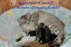 """""""Camada""""E"""".27/agosto/2007!!!"""