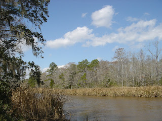 Wambaw Creek