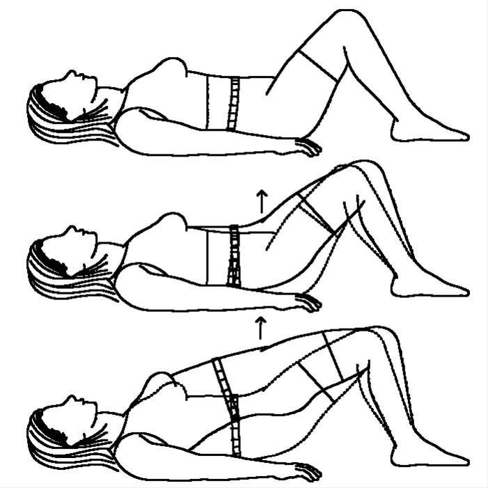 exercise programs  exercise program using own body weight