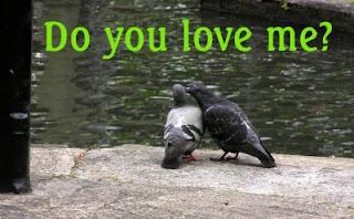 Обичаш ли ме?