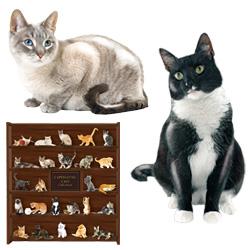 Ceramic Figurine Cat In Box