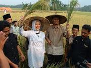 Pertanian Berkelanjutan