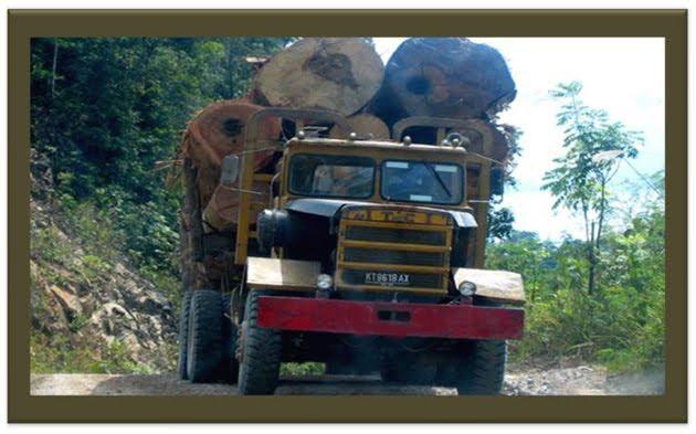 Diduga Truk Pengangkut Illegal Logs: Marissa Haque