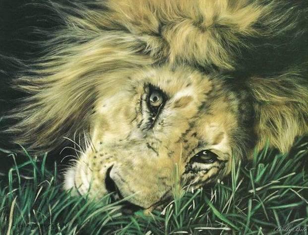 PARTHATHUM KETATHUM: BEAUTIFUL ANIMAL PAINTINGS: vazhavazhamudan-viswam.blogspot.com/2010/12/beautiful-animal...
