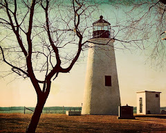 VIDEO: Turkey Point Light