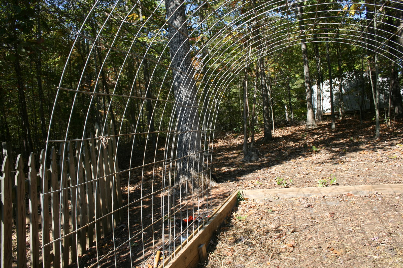 A tiny homestead building a permanent greenhouse with cattle building a permanent greenhouse with cattle panels part 1 baanklon Choice Image