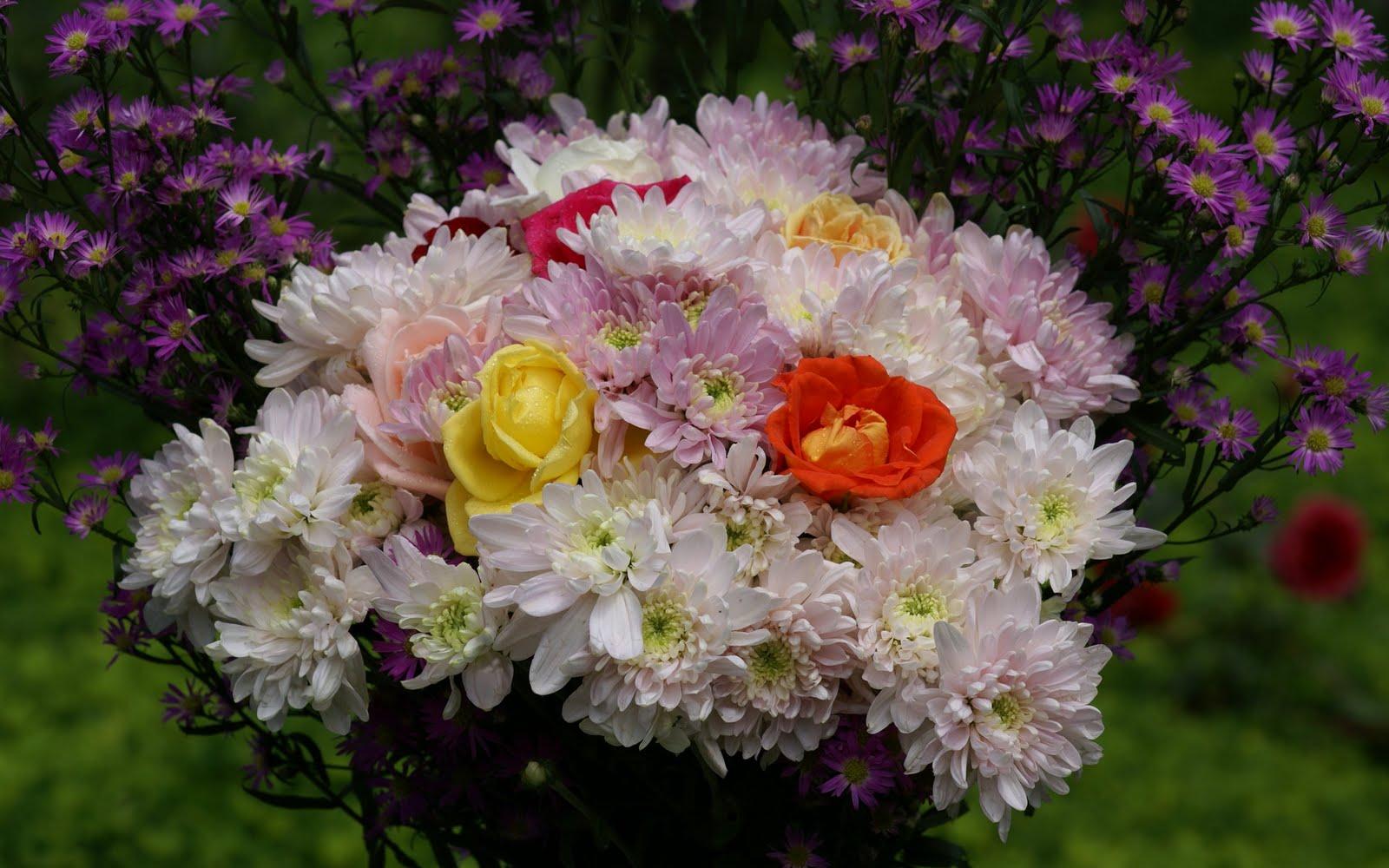 http://4.bp.blogspot.com/_BEyQraI-KQQ/SxSwuDWlp_I/AAAAAAAADtU/BDU3ckW7M4E/s1600/roses-dsc01919.jpg
