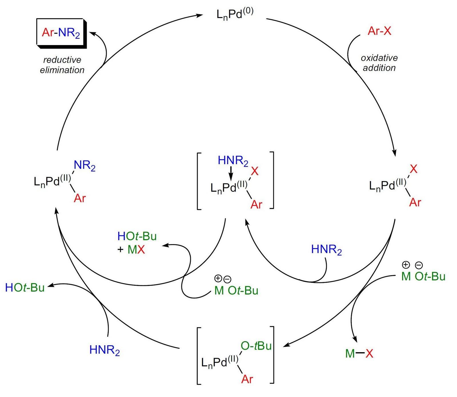 palladium catalysed coupling reactions pdf