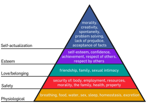 Maslow's hierarchy of liberal bureaucracy needs   A liberal ...