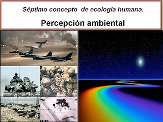 Persepcion ambiental