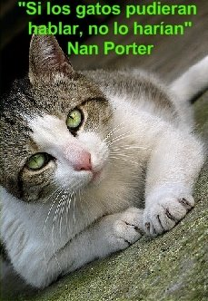Nan Porter