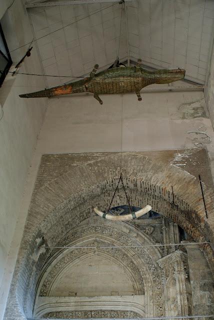el-lagarto-de-la-catedral-de-sevilla